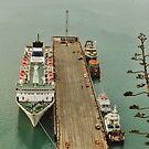 Long Boat Dock by AnnDixon