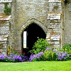 An Old Wall with an Arched Doorway by hootonles