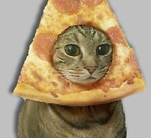 Cat with Pizza Head by Isabella Mendiola