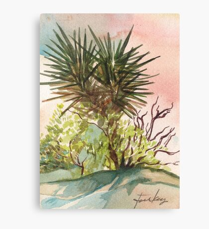 Joshua Tree in California Canvas Print