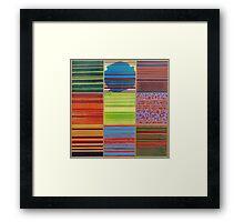 Color Topography Framed Print