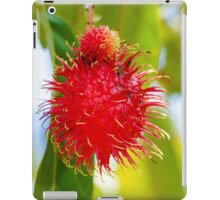 Close-up shot of a Rambutan tropical fruit in the tree iPad Case/Skin