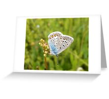 Spirit of a lovely summer Greeting Card
