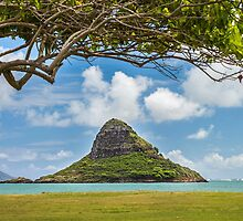 Chinaman's Hat 1 by Leigh Anne Meeks