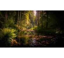 Lydford Gorge Photographic Print