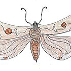 The Endangered Austyn Teal Moth (one-line #123) by dthaase