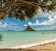 Chinaman's Hat 3 by Leigh Anne Meeks