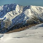Lone skier, Bogong High Plains by Kevin McGennan