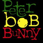 Peter, Bob and Bunny by mijumi