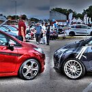 Red and Grey Fiestas by Vicki Spindler (VHS Photography)