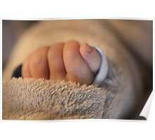 Hand of a newborn baby Poster
