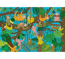 Happy Sloths Jammed Jungle  Photographic Print