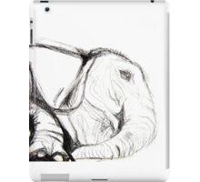 Elephant Evolution iPad Case/Skin