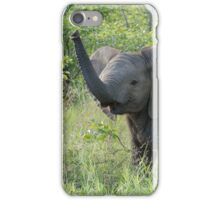 """""""Who are you?"""" iPhone Case/Skin"""