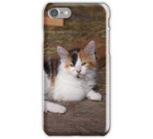 Calico Kitty iPhone Case/Skin