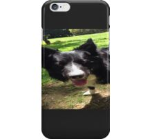 Border collie smile! iPhone Case/Skin