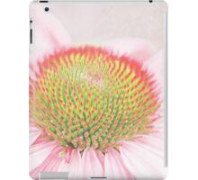 Echinacea macro iPad Case/Skin