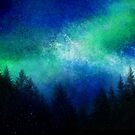 Aurora Borealis Green Night Sky  by Jacqui Frank