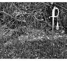 Thy Sword Photographic Print