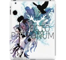 EXPECTO PATRONUM HEDWIG WATERCOLOUR iPad Case/Skin