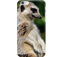 Bemused Meerkat iPhone Case/Skin