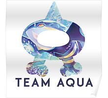 Pokemon Team Aqua Poster