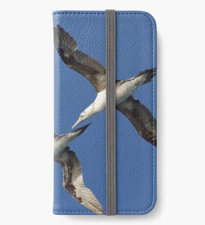 Juvenile Gannets iPhone Wallet/Case/Skin