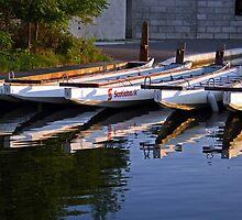 Dragon Boats by Janet Gosselin