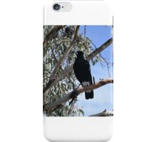Magpies - Australian Bird iPhone Case/Skin