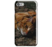 trapped in a fence iPhone Case/Skin