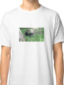 Australian brushturkey Classic T-Shirt