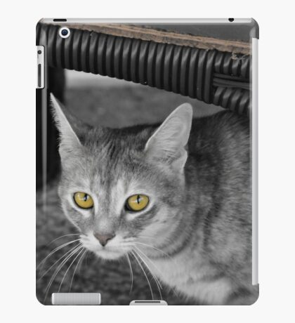 MEEKA B&W with Color Eyes iPad Case/Skin