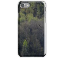 Two eagles hunt iPhone Case/Skin