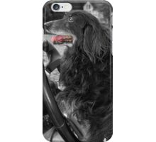 Coty with Selective Color iPhone Case/Skin