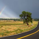 Rainbow Road by Bo Insogna