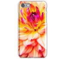 Beautiful Dahlia  iPhone Case/Skin