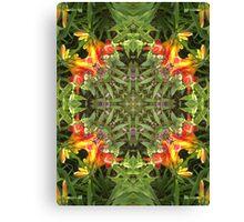 Lilie, Garten, Mandala, Natur, grün, sehr schön, Blumen, Blüte, Sommer, Frühling Canvas Print