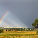 Beautiful Contryside Rainbow by Bo Insogna