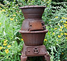 Cast Iron Stove and Wild Flowers by Sherry Hallemeier