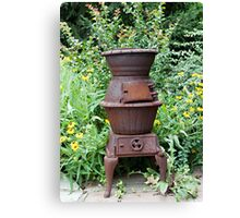 Cast Iron Stove and Wild Flowers Canvas Print