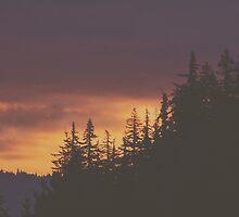 Columbia River Sunrise by Eric Muhr