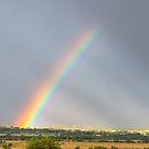 Country Rainbow Optics by Bo Insogna