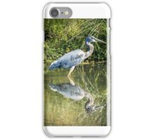 Great Blue Heron iPhone Case/Skin