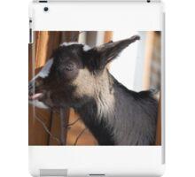 silly goat iPad Case/Skin