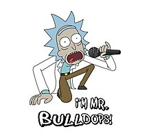Rick and Morty – I'm Mr. Bulldops Photographic Print
