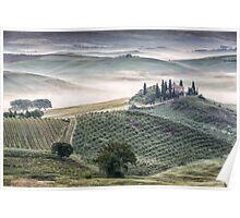 Belvedere misty morning Poster