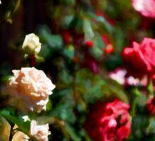 Rose 376 Sticker