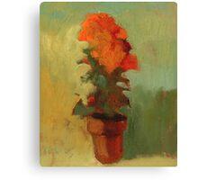 Summer marigold Canvas Print