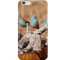 GETTING TOGETHER - BLUE WAXBILL – Uraeginthus angolensis iPhone Case/Skin