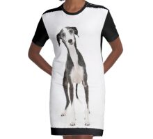 Iola the Galgo Graphic T-Shirt Dress
